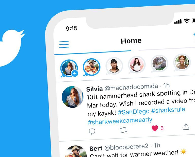 Twitter Fleets: are Twitter stories coming soon?